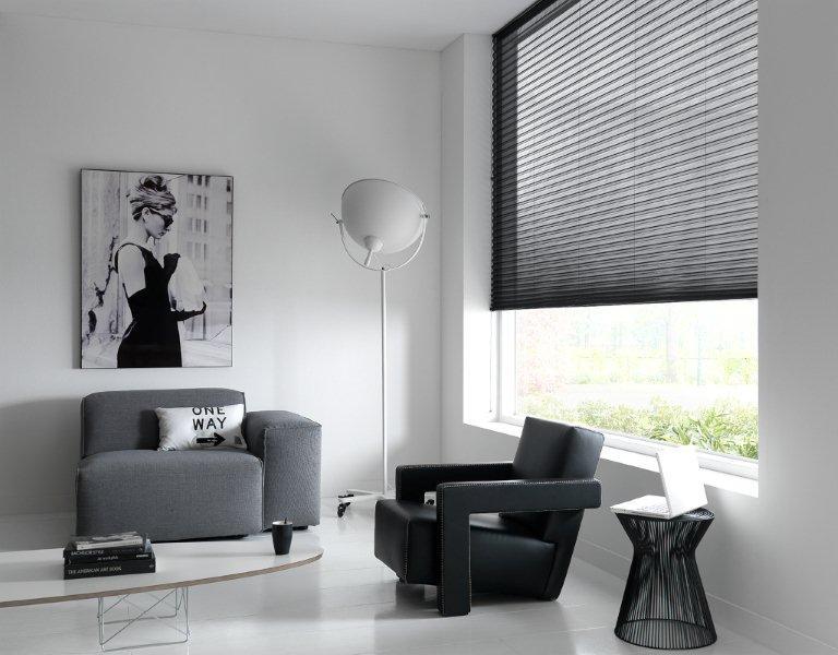 https://se-raamdecoratie.nl/wp-content/uploads/2015/04/Plisse-en-Duette-gordijnen_SE-Raamdecoratie_Due-3.jpg