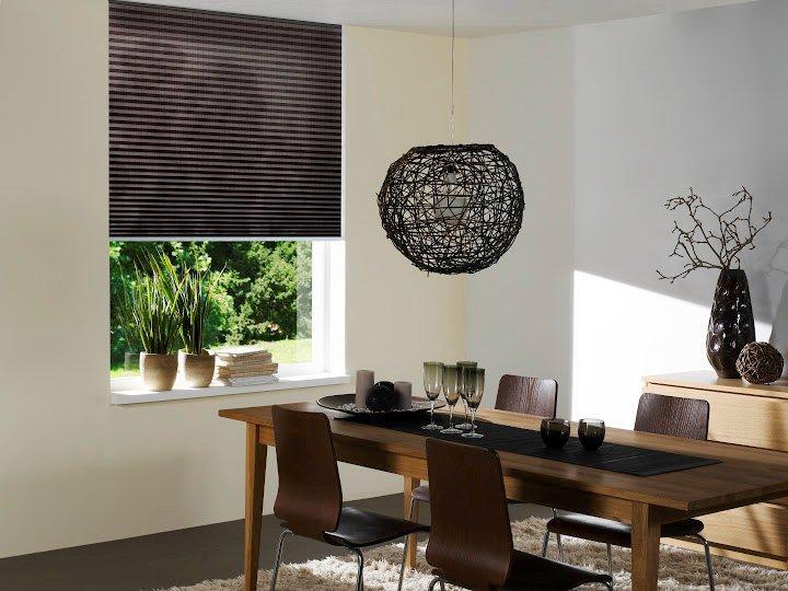 https://se-raamdecoratie.nl/wp-content/uploads/2015/04/Plisse-en-Duette-gordijnen_SE-Raamdecoratie_plisse1.jpg